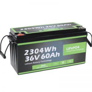 工場のコンセントの安全設計長寿命マリン36v60ahバッテリーLifepo4